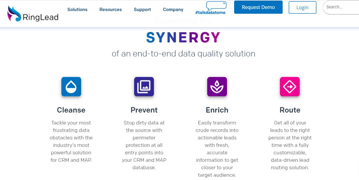 RingLead data cleaning screenshot
