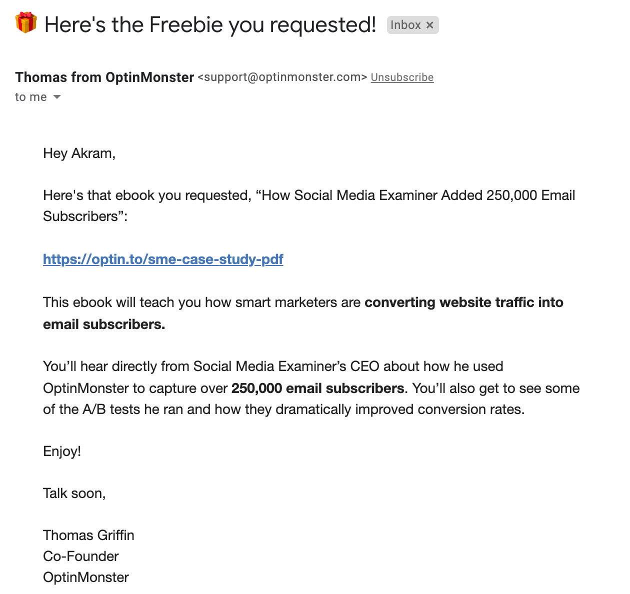 example of an automated email used as lead magnet